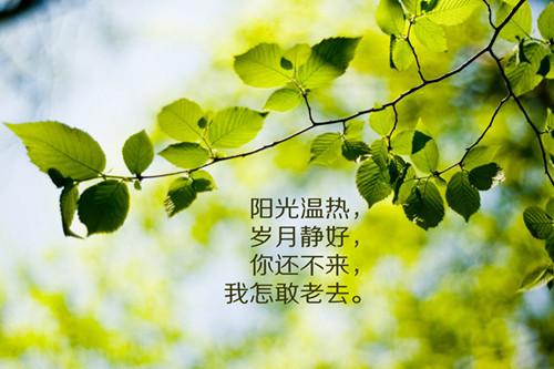 关于欣赏的说说:其实,喜欢也分很多种的,一种是对别有感觉,一种,只是高于朋友之间的安慰,还有一种,是对别人的欣赏!