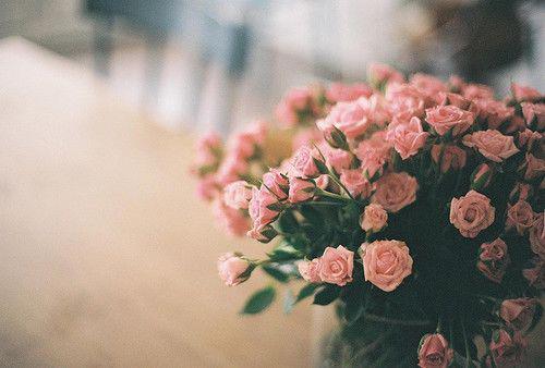 关于地狱的说说:在回忆里继续梦幻不如在地狱里等待天堂 Dreaming in the memory is not as good as waiting for the par